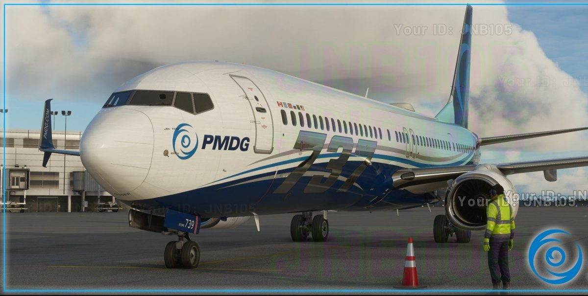 PMDG's first MSFS addon will be the 737NG3
