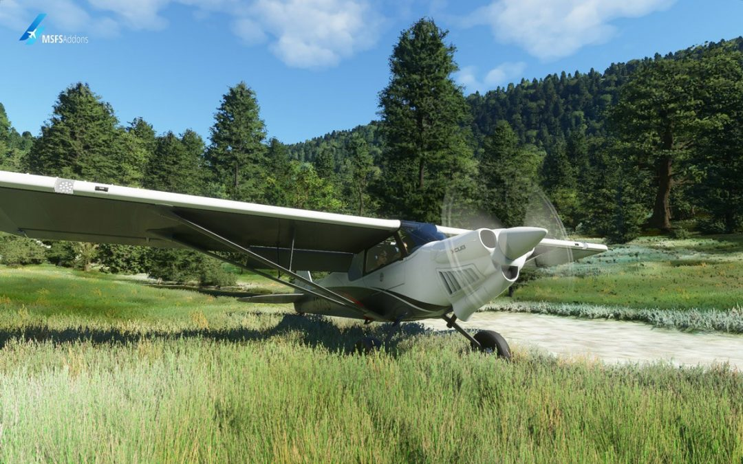 FS2020MP is a new platform for simmers to meet and fly together