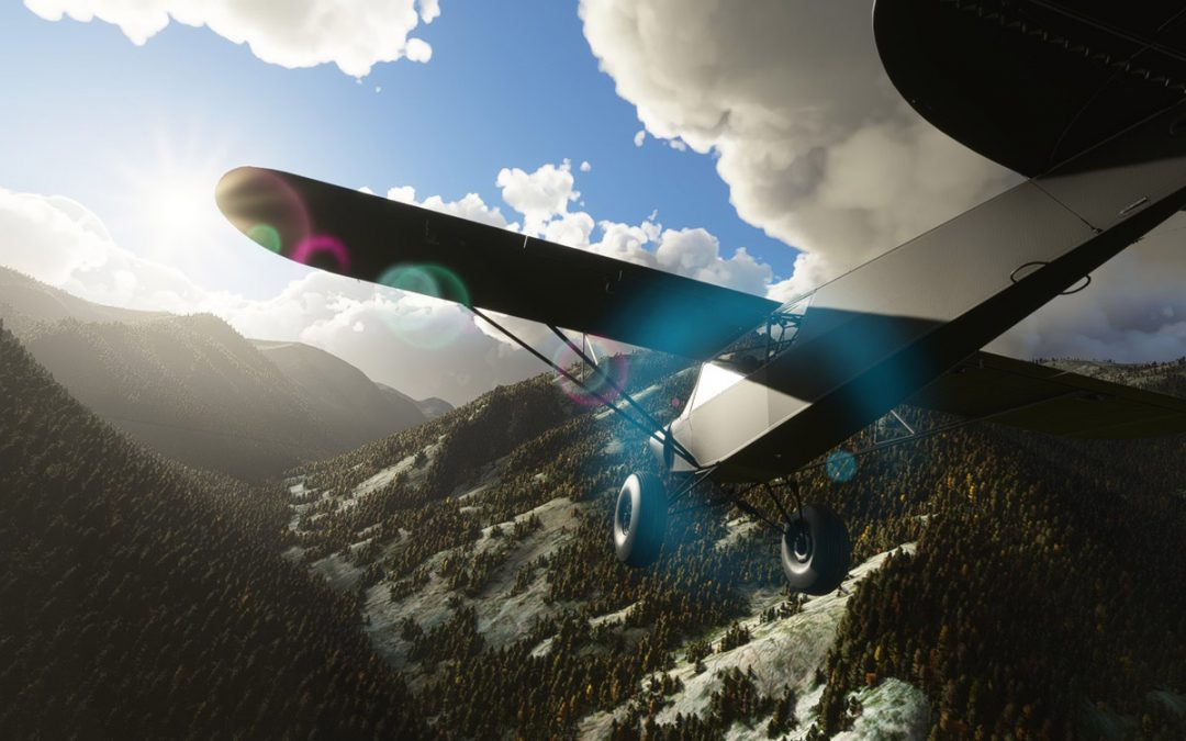 This 'Savage Carbon' is the best bush airplane you can get for Flight Simulator