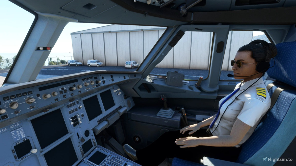 Feeling lonely during your flights? This free mod adds a copilot to the seat next to you!