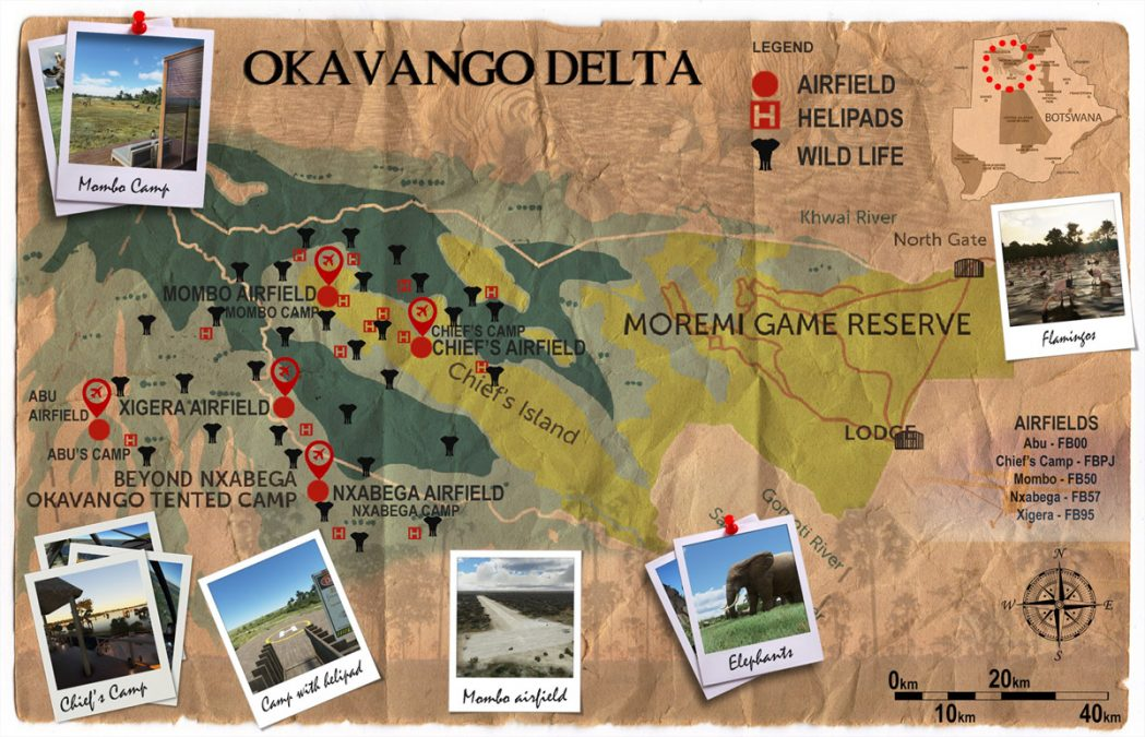 Become a wildlife tourist with the upcoming Okavango Delta scenery for MSFS