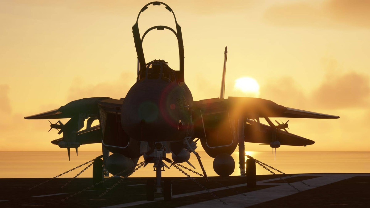 The F-14 A/B Tomcat from DC Designs is now available for Flight Simulator